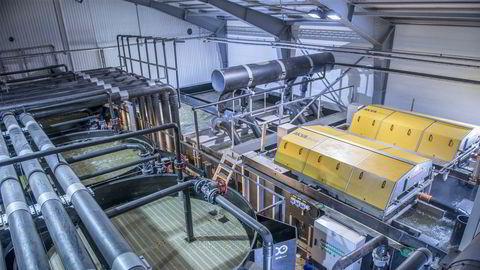 Akva Group produserer ulikt utstyr til oppdrettsnæringen, blant annet systemer for settefiskanlegg