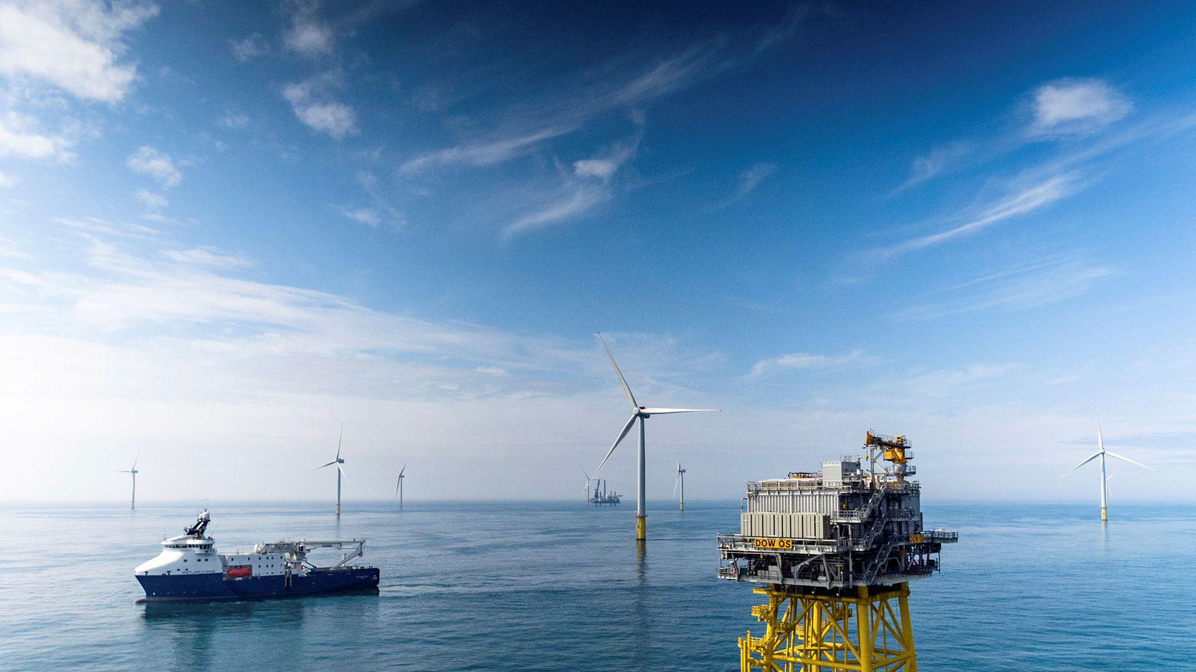 I Norge har vindkraft til havs blitt pekt på som en industrimulighet og en løsning for å unngå konfliktfylte utbygginger på land. Den skotske organisasjonen for hvitfiskprodusenter SWFPA advarer.