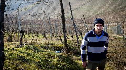 Luca Roagna behandler sine vinmarker i Piemonte som en skog.