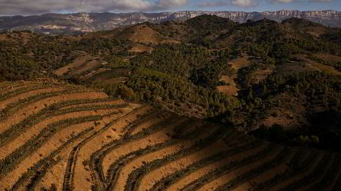 Soria Moria. Før en ung turgåer oppdaget denne utsikten, lå det som er blitt Spanias mest eksklusive vinområde, øde og forlatt i flere tiår.