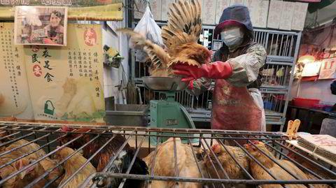 Kinesernes tradisjon med å slakte dyr på åpne markeder øker risikoen for smittespredning fra dyr til mennesker.