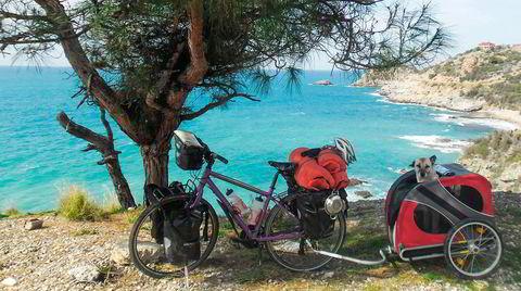 Ved pinjetreet. Britisk-iranske Ishbel Rose Holmes har satt fra seg sykkelen med løshunden Lucy tittende frem fra vognen. Så er det opp med mobilen, gå tilbake og tråkke videre.