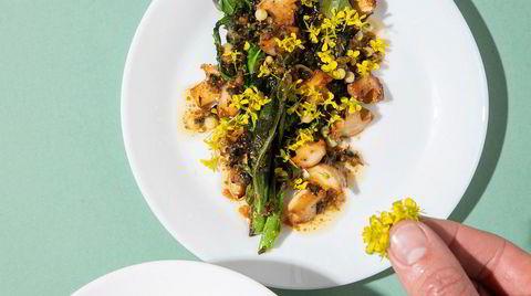 Brokkåli. Russekålen er en av plantene Vindegg har lettest for å «selge inn» til ferske sankere – bruken og smaken er omtrent som brokkoli. Høst den helst før blomstring – kuttes de ned, kommer det ofte opp en ny.