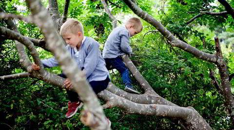Mange barn liker seg ute i naturen, men veien derfra til å frivillig lese bøker om naturen kan være lang og kronglete.