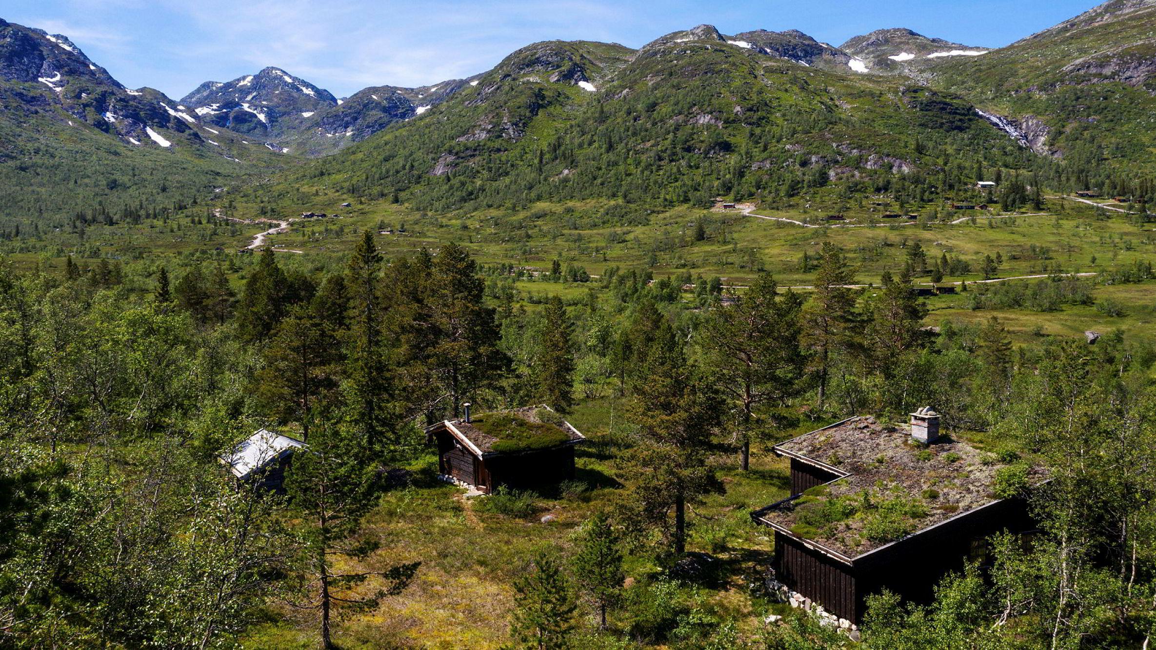 «Nystøyl» er et av to hyttetun som inngår i fjelleiendommen i Telemark, som brødrene Gunnar Frederik og Olav Hindahl Selvaag ga 11 millioner kroner for i august.