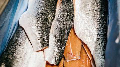 Arbeiderpartiet er tydelige på at vi ønsker vekst og utvikling i sjømatnæringen som en av våre viktigste næringer, skriver innleggsforfatteren.