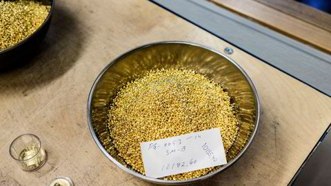 Råvarer generelt og gull spesielt er god sikring mot inflasjon, skriver Herleif Håvik. Illustrasjonsfoto.