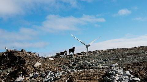 Elektrifisering av olje- og gassplattformer kan vere ei bestilling på tusenvis av nye vindmøller, som vil komme i konflikt med naturvern, skriv artikkelforfattaren.