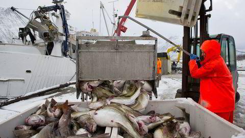 Bærekraftige, norske fiskerier er et resultat av at fiskere, politikere, byråkrater og fagfolk har samarbeidet for å finne bedre løsninger, skriver Sigbjørn Landazuri Tveteraas.