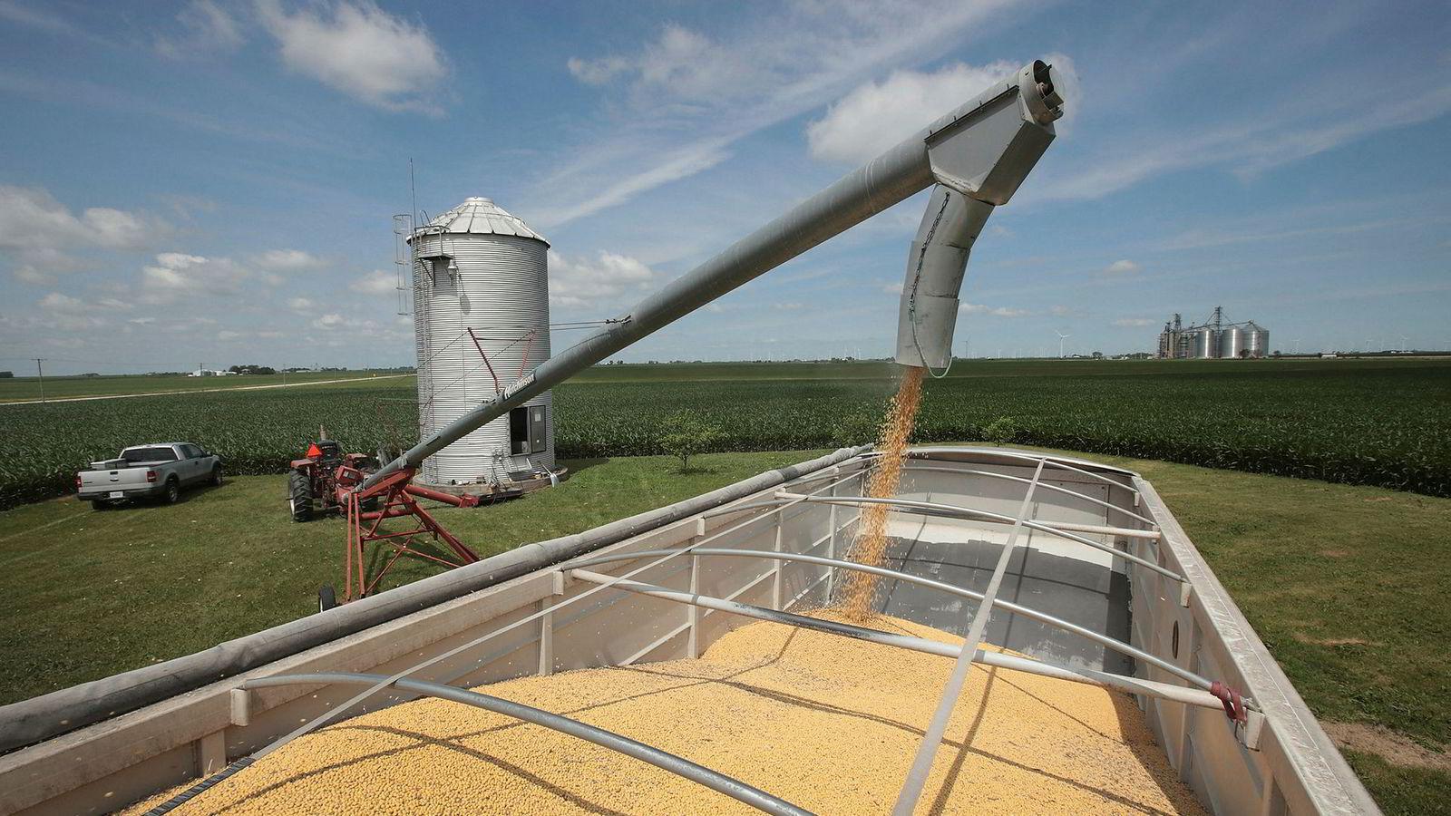 Eksporten av amerikanske landbruksprodukter til Kina har stupt de siste månedene. Like før de 13. handelsforhandlingene starter har Kina økt importen av blant annet soyabønner.