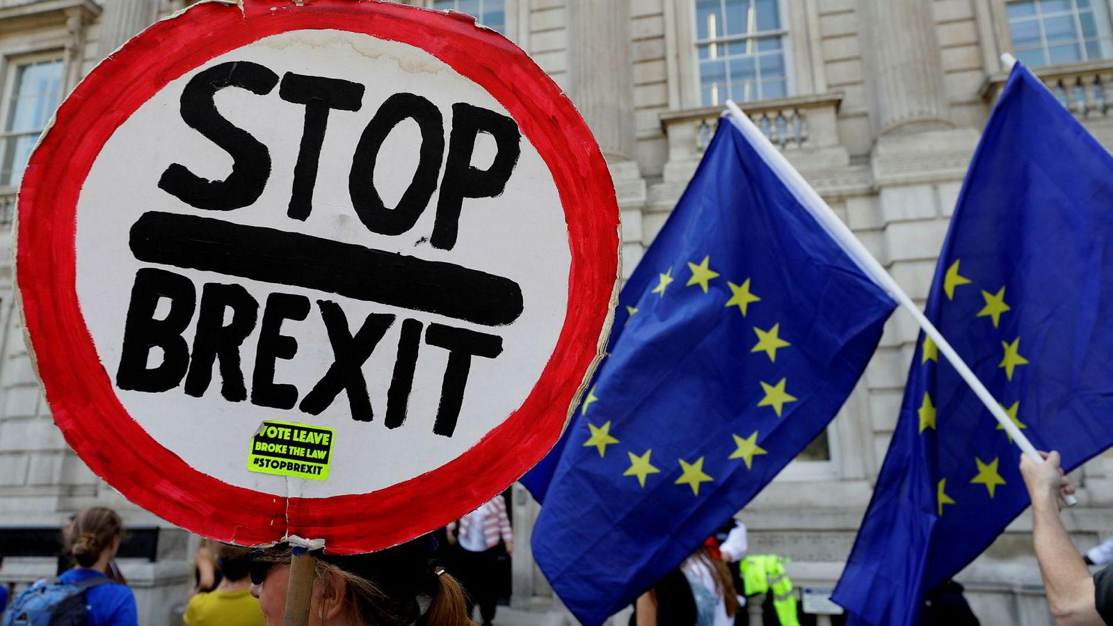 Tirsdag er det duket for første runde i den antatt siste kampen om brexit. Snaut to måneder før britene forlater EU, har politikerne i praksis bare noen få dager på å bestemme hvordan det skal skje. Disse demonstrantene viser tydelig hvilket utfall de ønsker seg.