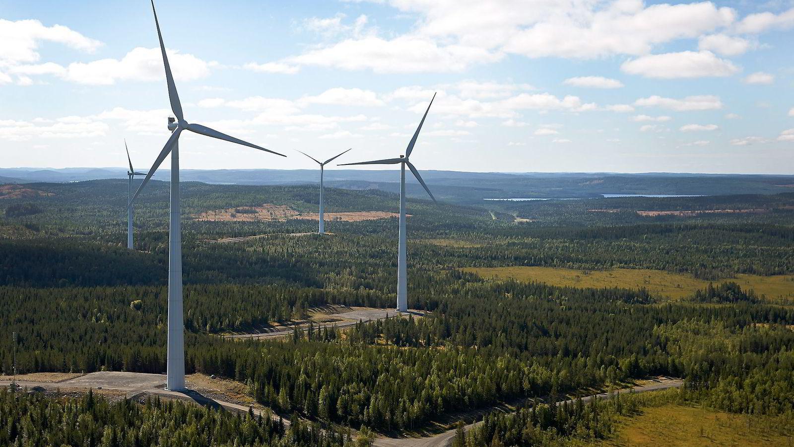 I dag bruker vi milliarder av kroner på å subsidiere utbygging av landbasert vindkraft i Sverige, samtidig som hundrevis av millioner kroner i forskningsstøtte går tapt i norske selskaper som aldri får fotfeste i produksjon. Her fra Stamåsen vindpark i Sverige, som er drevet av Statkraft.