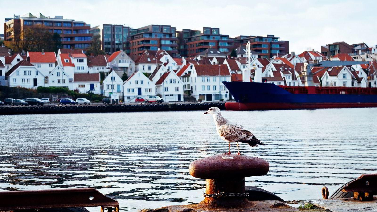 Avbildet er et boligområde i Stavanger, Rogalands største by. Foto: Istock