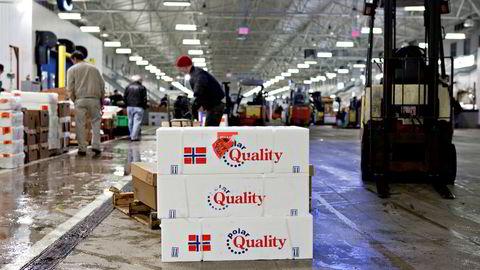 Volumet av norsk sjømateksport falt med 8 prosent i november. Likevel økte eksportverdien økte med 11 prosent. Her fra New Fulton Fish Market i Bronx.