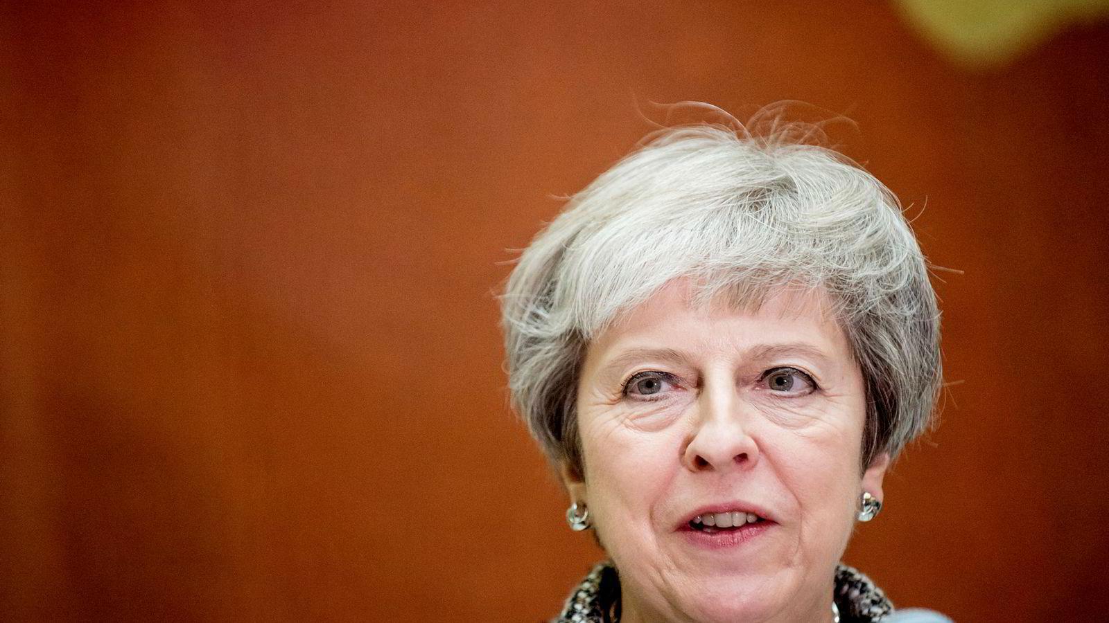 Brexit har tatt store deler av Theresa Mays tid som statsminister.