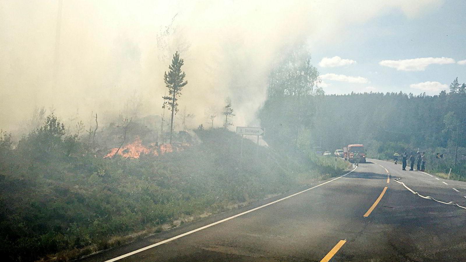 Europa har vært herjet av skogbranner, og Norge har ikke sluppet unna. Her brenner det i Grue kommune i Hedmark i juli.