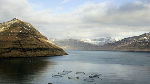 En grunnrenteskatt for havbruksnæringen, som gir lokalmiljøene inntekter, kan utformes slik de har gjort det på Færøyene.
