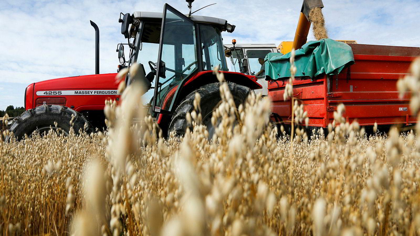 For første gang er det færre enn 40.000 søknader om produksjonstilskudd hos Landbruksdirektoratet.