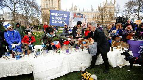 Markeringer for og mot brexit har pågått her utenfor parlamentet helt siden før folkeavstemningen sommeren 2016, nå sist med hunder mot brexit i helgen. Tirsdag skal parlamentarikerne i bygningen bak nok en gang stemme over brexit, og statsminister Theresa Mays fremtid.