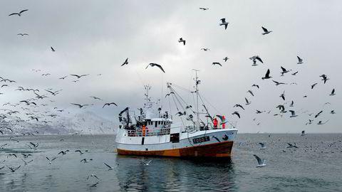 Medier har presentert skrekkscenarioer om hva som kan skje med fiskebestandene dersom en skulle tillate olje- og gassutvinning i Lofoten, Vesterålen og Senja, skriver artikkelforfatteren.
