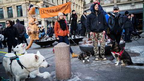 Turtøyprodusenten Stormberg svarer på trusler om boikott fra ulvemotstandere med å gi pengestøtte til tilhengerne av ulv. Her fra en demonstrasjon i helgen foran Stortinget for bevaring av ulv og andre rovdyr.