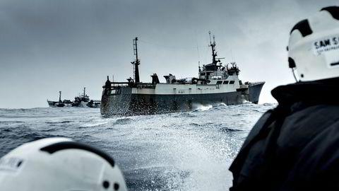 Den norskbygde tråleren «Thunder» jages av Sea Shepard-skuten «Bob Barker». Foto: Simon Ager, Sea Shepard