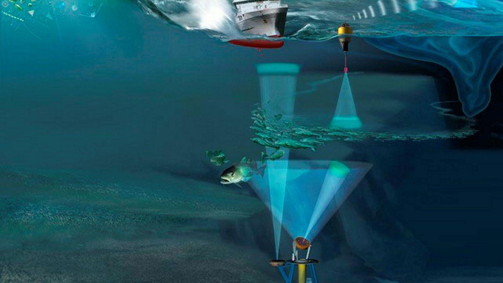 Observasjoner av livet i havet blir gjort med ny integrert teknologi. Det blir blant annet brukt bunnstående sensorplattformer, overflatebøyer, satellitter og fartøy.