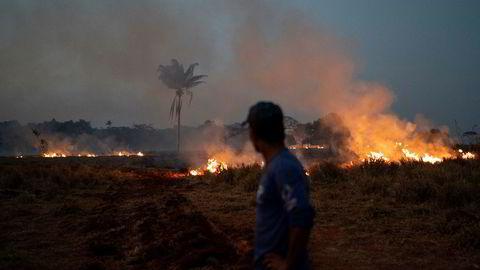 Det brenner mange steder i Amazonas, og Brasil får kritikk for ikke å beskytte regnskogen.