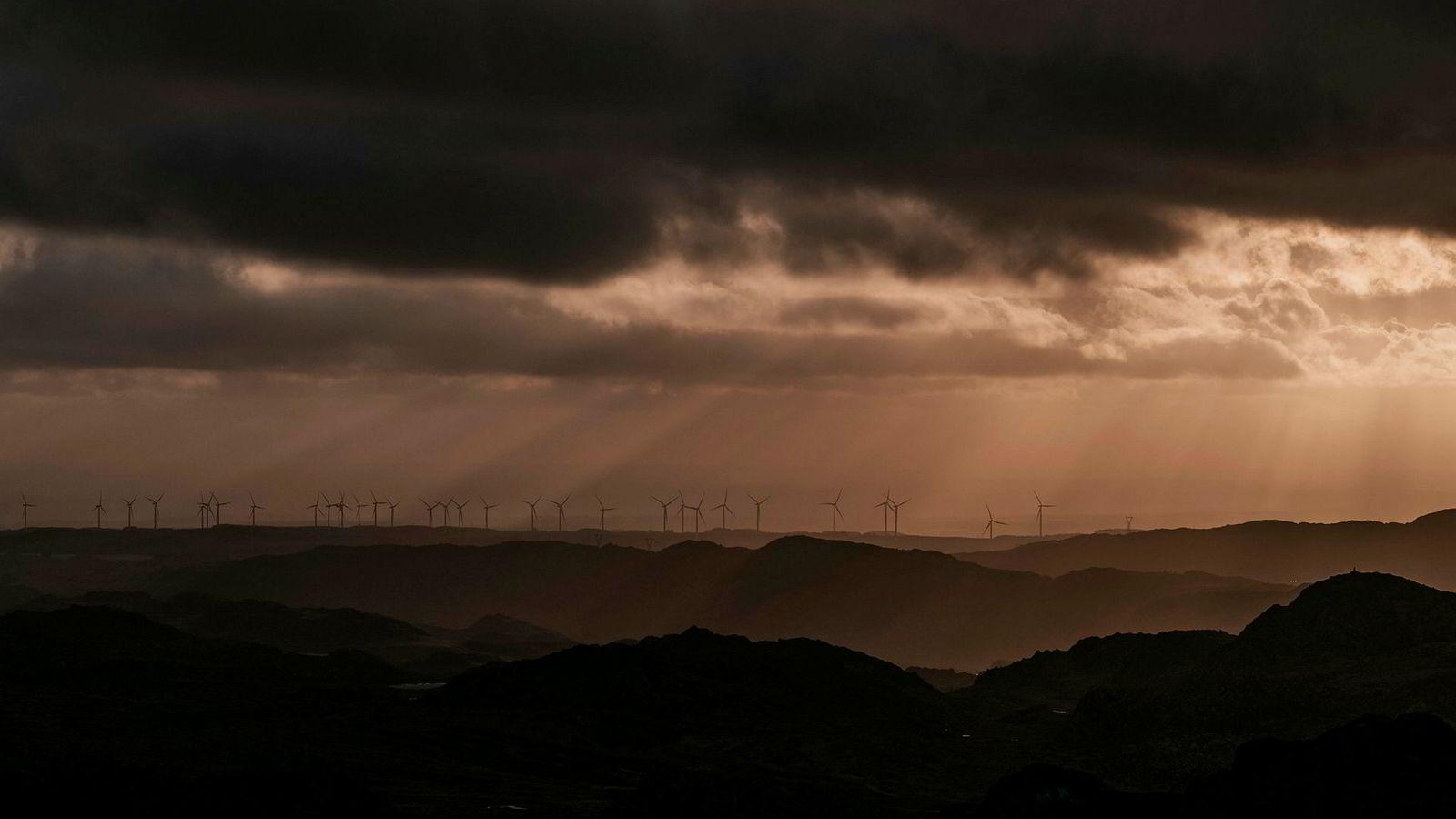Utbygging av vindmøller på land er lønnsomt, men få ønsker det i sin egen bakgård. Har vi politikere med kraft nok til å kjempe mot dem som mener at andre bør ta klimaregningen? Her fra Høg-Jæren vindpark.