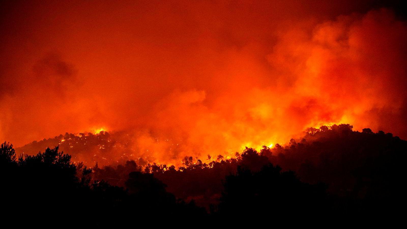 Flere store skogbranner herjer i Hellas. Verst er det på øya Evia, nær landsbyen Makrimalli der bildet er tatt.