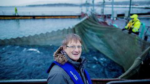 Inge Berg, eier og administrerende direktør i Nordlaks-konsernet, får mer enn doblet antall utviklingskonsesjoner for realisering av havmerd-prosjektet sitt.