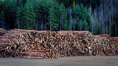 Vi kan sammenligne skogen med en «energibank» hvor det årlig gjøres innskudd av CO 2 og energi. Når vi feller et tre, tar vi i CO 2 – regnskapet ut karbonet fra «banken» og fører det opp som et CO 2 utslipp. Netto innskudd vil være forskjellen mellom årlig tilvekst og uttak av tømmer.