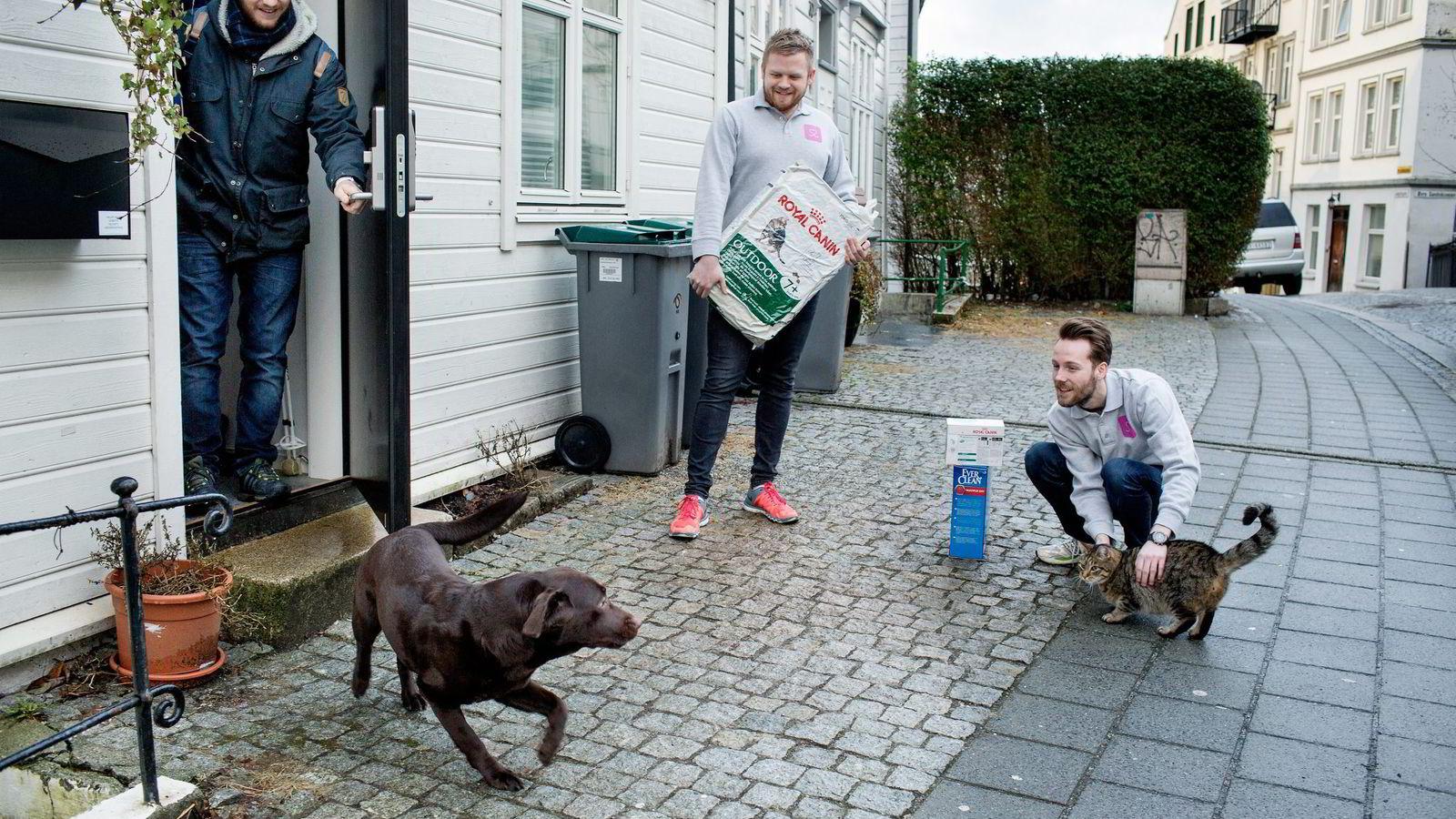 Selskapet Dyrekassen har slått seg opp på hjemmelevering av dyrefôr i flere norske byer. Her leverer Erik Høsteland Åland (i midten) og Øyvind Eriksen (til høyre) kattemat og -sand til Hallvar Helleseth i Bergen. Hunden Leia og katten Han Solo utgjør halvparten av dyrene i dette hjemmet.                Foto: