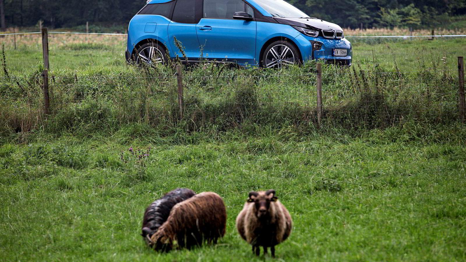 Nordmenn går i flokk, og i år kjøpte mange BMWs lille elbil i3. Bilen har fått større batteripakke og kan kjøre lenger enn før.