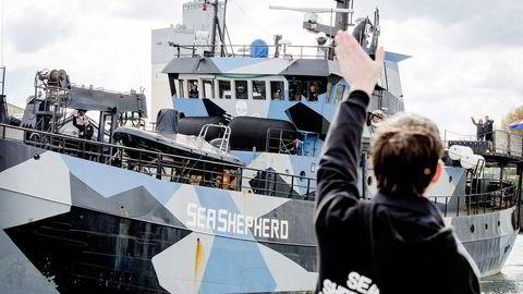 Sea Shepherd-aktivistene på «Bob Barker» har vært på havet siden 3. desember ifjor. Denne uken ble de møtt av Sea Shepherd-tilhengere i Bremen i Tyskland. Alle foto: