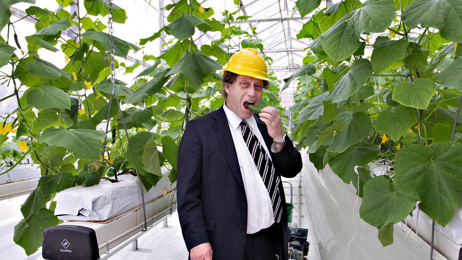 Bellona-stifter Frederic Hauge har tidligere vært på besøk i Sahara Forest Project-pilotanlegget i Qatar. Dyrking av grønnsaker som agurker har vært blant forsøkene.