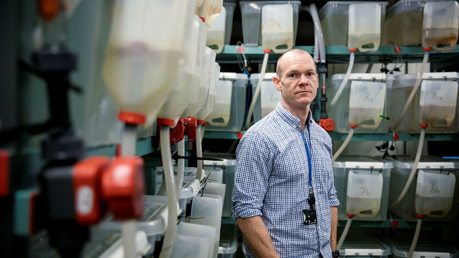 Kevin Glover, her i lakseluslaboratoriet på Havforskningsinstituttet er ikke i tvil om hva som er hovedkilden til lakselusspredningen langs norskekysten.