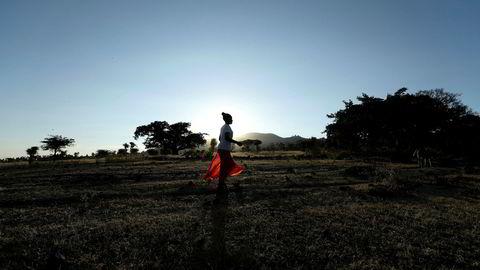 Etiopia har satt verdensrekord i planting av nye trær i løpet av en dag.