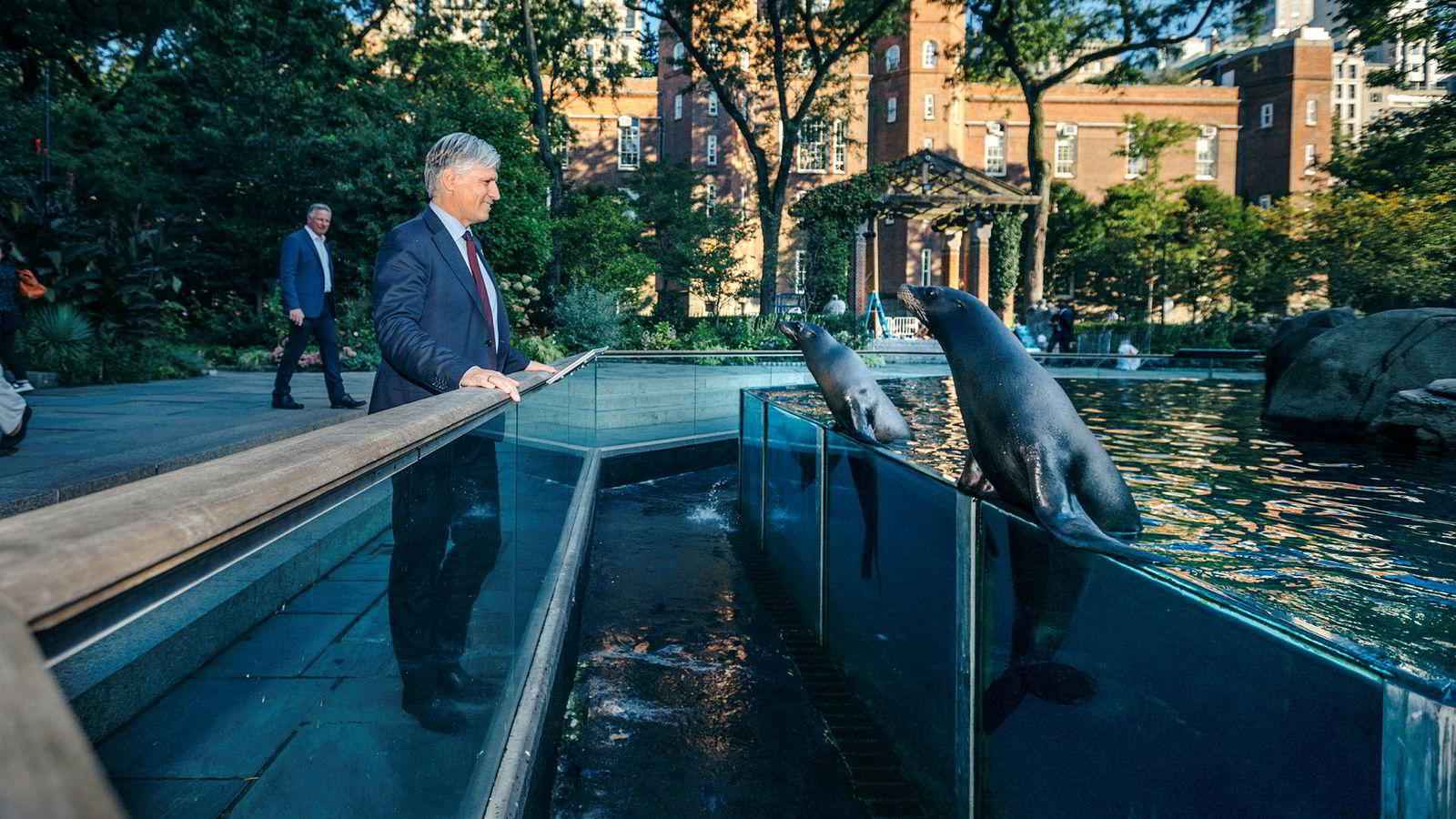 Klima- og miljøminister Ola Elvestuen fant tonen med sjøløvene i Central Park Zoo i New York.