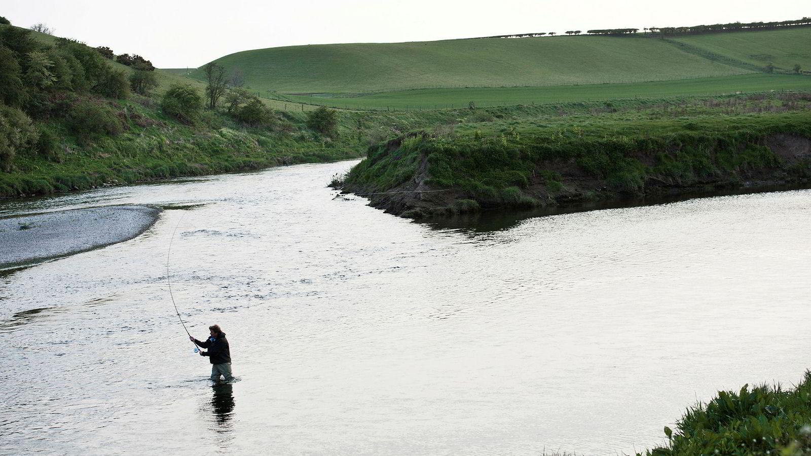 Villaksfangstene i de skotske elvene, som her i River Tweed, er rekordlave. Det kan indikere at det blir en dårlig sesong også i Norge.