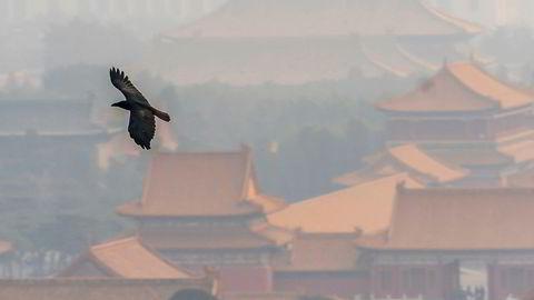En ravn flyr over Den Forbudte By i Beijing i forurenset luft (smog) på mandag.