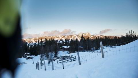 Daglig leder Odd Stensrud i Alpinco har begynt salget av hyttetomter i den nye fjellsiden de skal bygge ut.