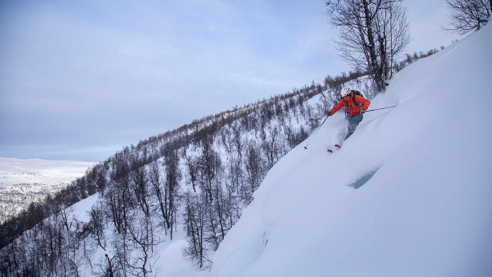 Ørjan Kongsvik Aall, leder i den norske delen av organisasjonen Protect Our Winters (POW), på ski i Hodlekveskogen i Sogndal skisenter.