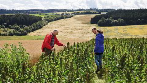 Nye tider. Erik Røhr har dyrket tradisjonelle grønnsaker og kornsorter på Heramb i mange år. Da datteren Marthe Røhr-Godø og svigersønnen Jardar Røhr-Godø tok over gården, ville de prøve noe helt nytt. Det synes Røhr er spennende