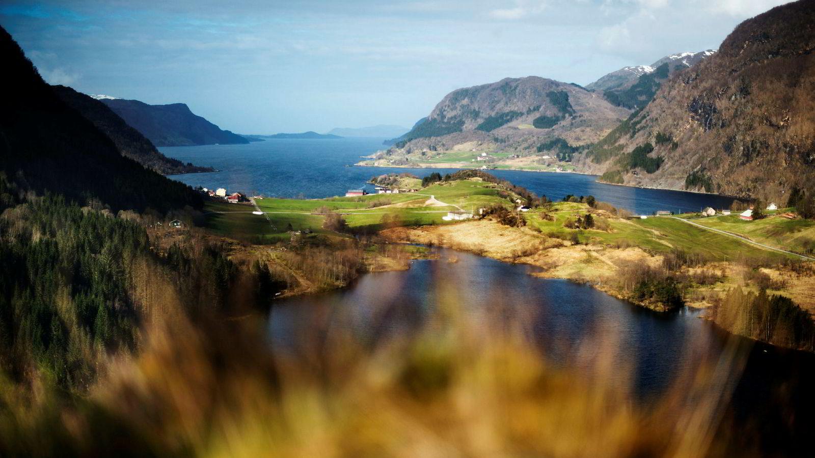 Klima- og miljødepartementet har gitt Nordic Mining tillatelse til sjødeponi her i Førdefjorden fra den planlagte gruvedriften i Engebøfjellet (fjellet i midten), men nå vil et tidligere styremedlem etablere underjordsgruve uten sjødeponi.