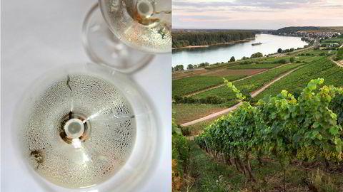 Fersk riesling fra noen av Tysklands beste vinmarker slippes på Polet i morgen tidlig.