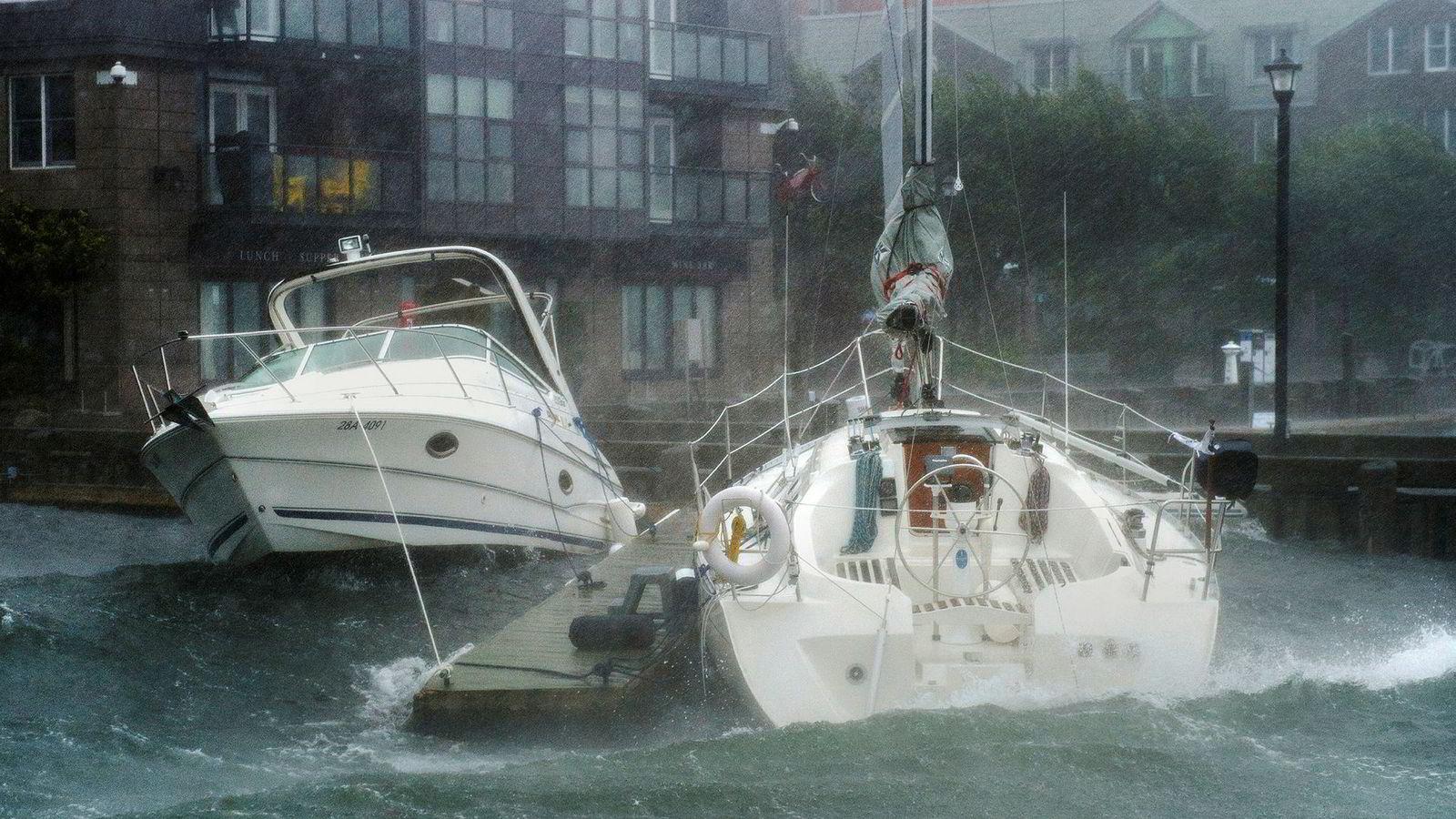 Bølger krasjer inn i båter langs Halifax, Nova Scotia da orkanen Dorian meldte sin ankomst lørdag.