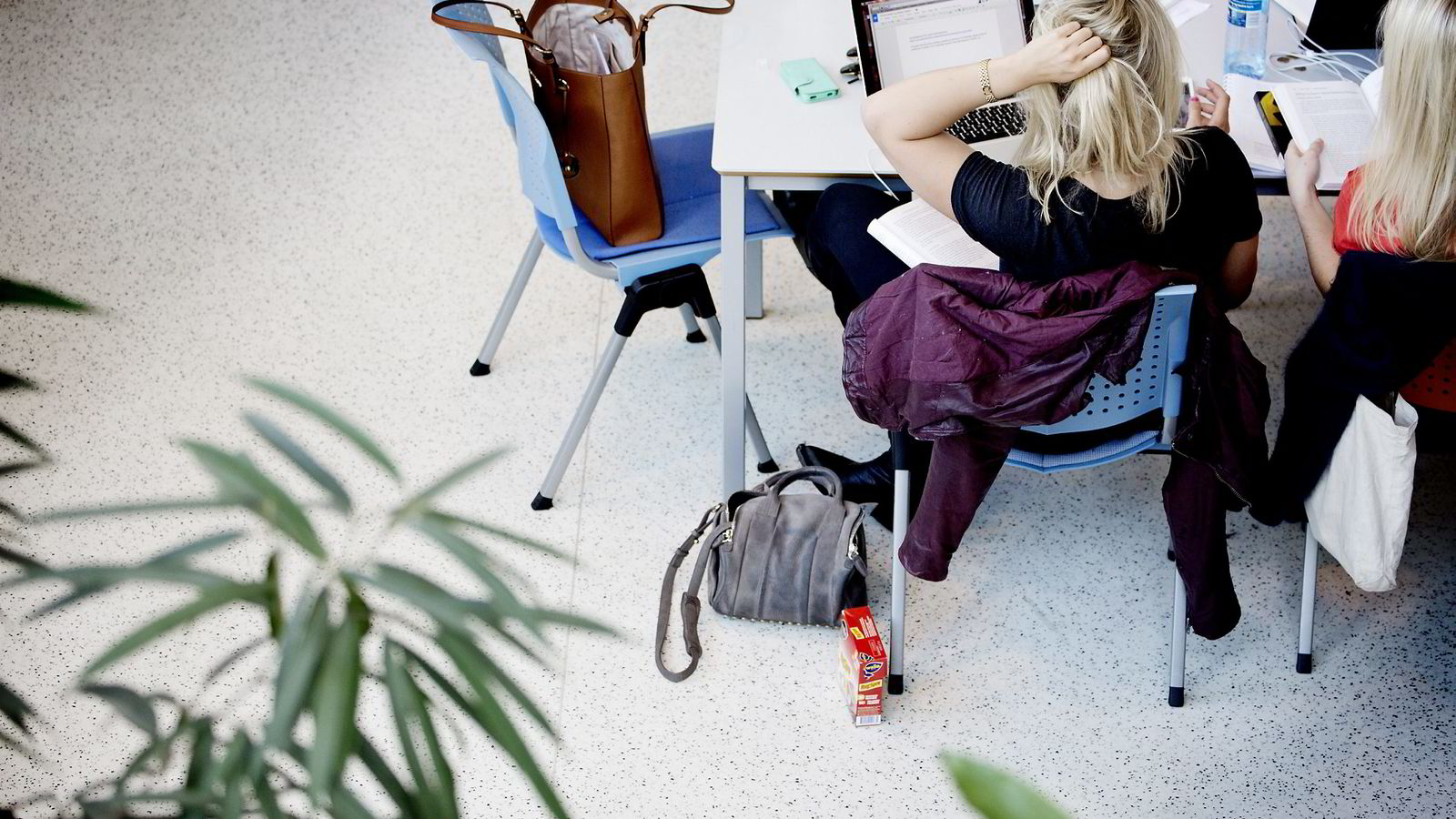 Studiestøtten må økes, mener NSO. Foto: Ida von Hanno Bast