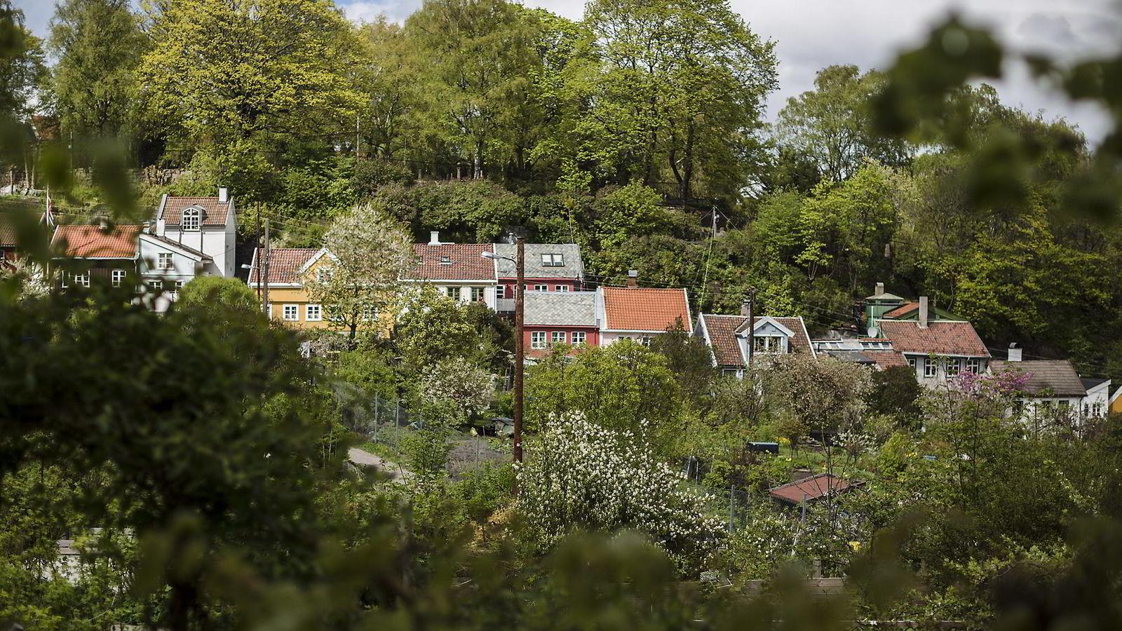 Ifølge meglerkjedene selges mange av boligene i Oslo for langt mer enn prisantydning også i juli.  Foto: