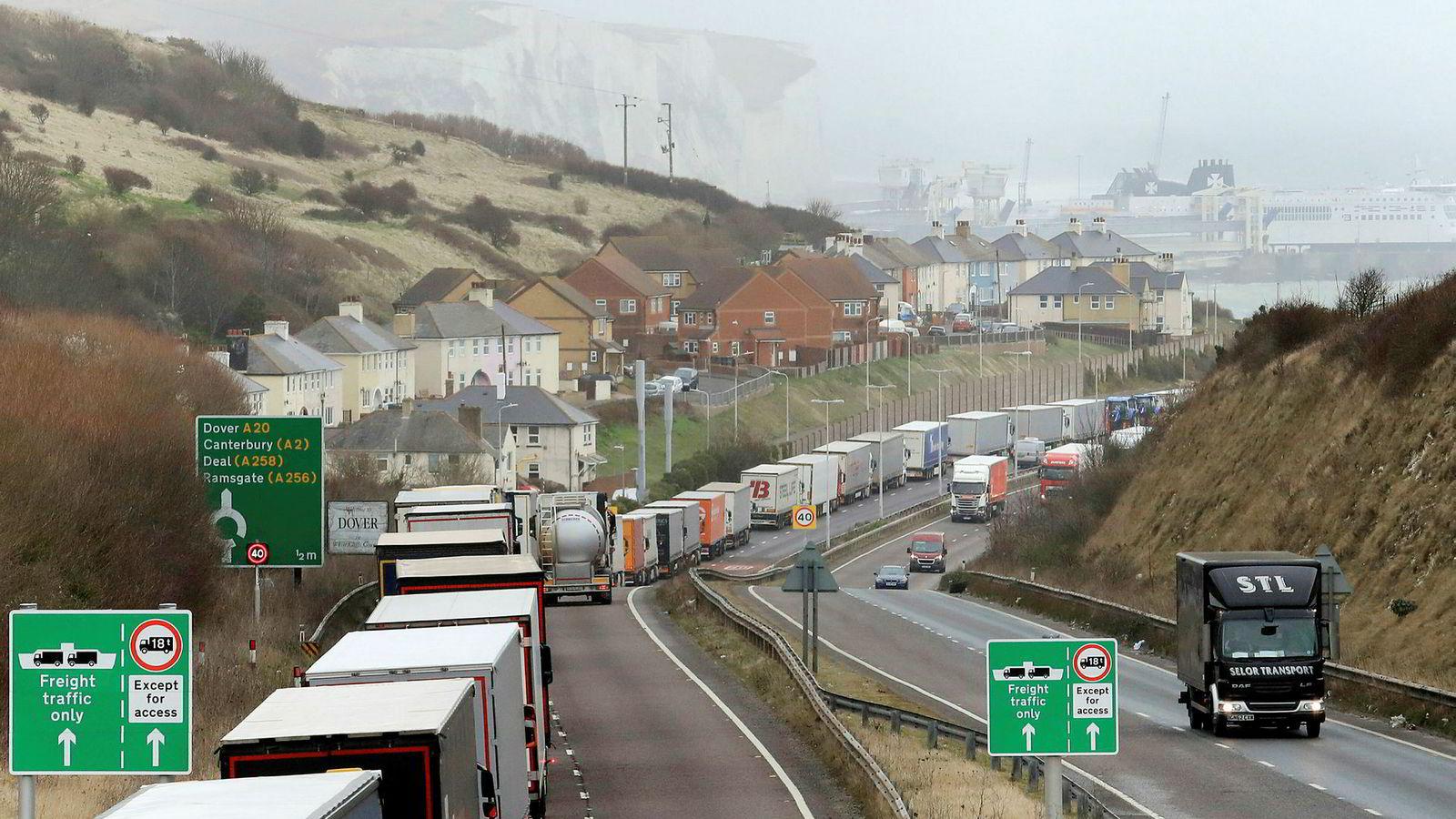 Britene er redde for nye køer som denne her ved Dover ved en hard brexit 29. mars, og fjerner derfor all toll på de aller fleste varer.